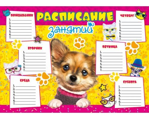 Расписание уроков А4 Собачка