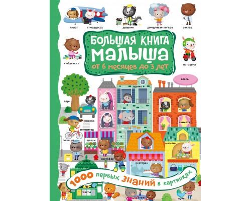 Большая книга малыша: от 6 месяцев до 3 лет 1000 первых знаний в картинках